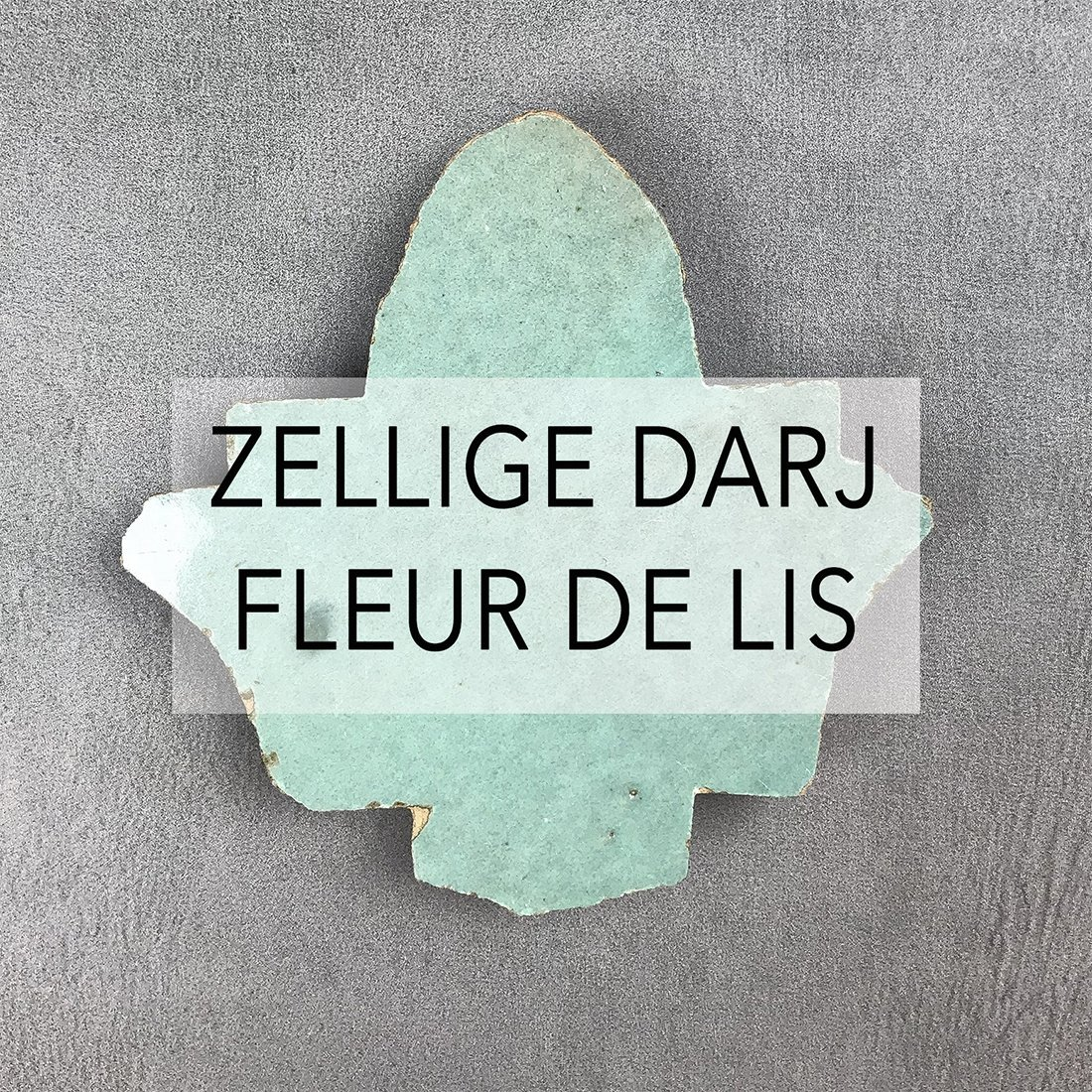 Zellige Darj Fleur De Lis tiles